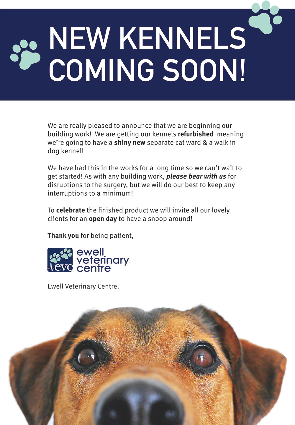 New Kennels Coming Soon To Ewell Vets