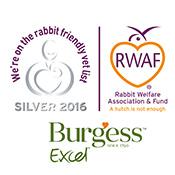 Ewell Vets In Ewell Is A Rabbit Friendly Practice